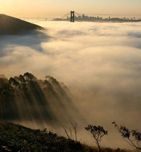 San Francisco, the birthplace of the medical cannabis movement. (Photo courtesy of Brocken Inaglory)