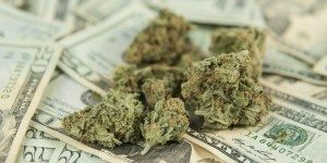 marijuana on money