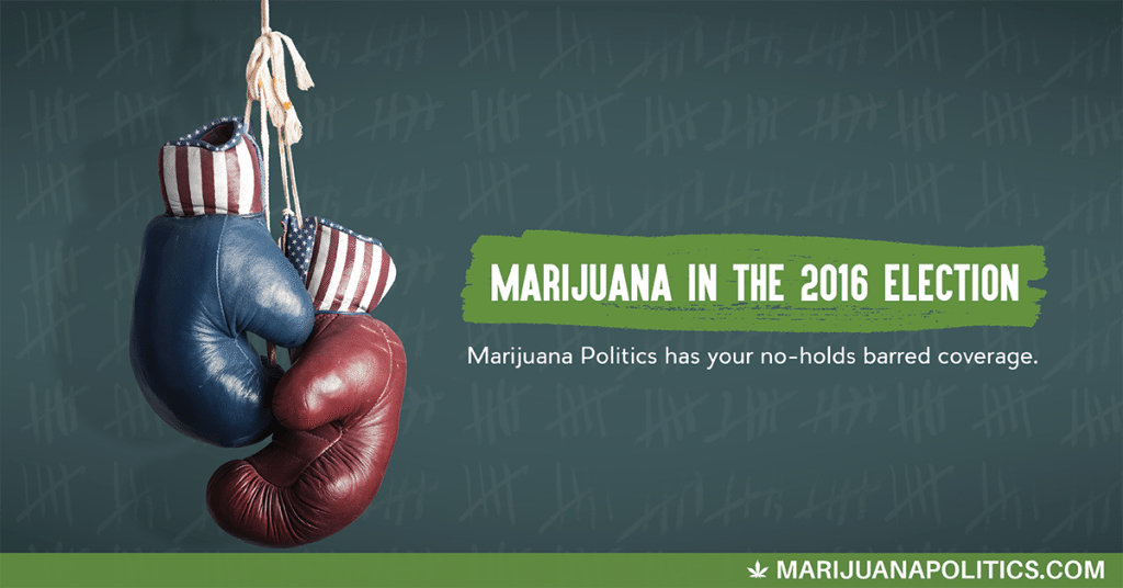 marijuana politics boxing gloves
