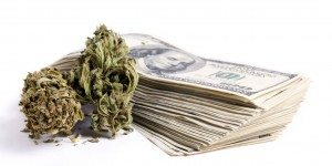 Cannabis and cash