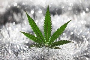 Marijuana Leaf snow ice