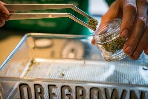 High-quality cannabis is available at Oregrown.