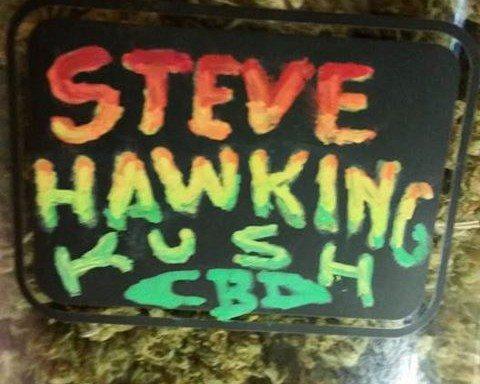 Steve Hawking Kush