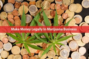 Make Money Legally In Marijuana Business