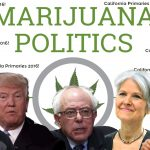 california primaries 2016 candidates marijuana positions