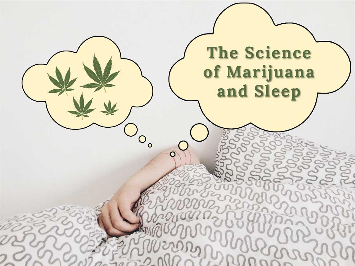 Science behind how marijuana helps sleep