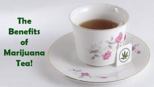marijuana tea benefits