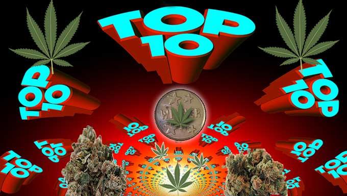 top 10 marijuana strains of 2016