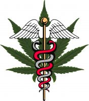 Which States Accept My Medical Marijuana Card?