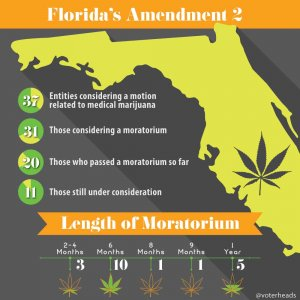 voterheads florida amendment 2