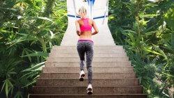 marijuana and training