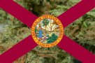 Florida Sidesteps Medicinal Marijuana Progression